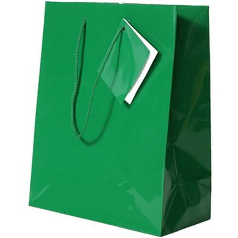 Green Glossy Medium Bag