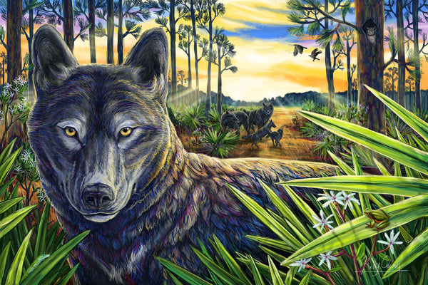 Florida Black Wolf Painting