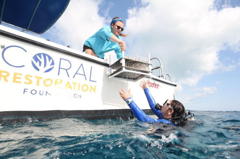 Coral Restoration Foundation (@coralrestorationfoundation)