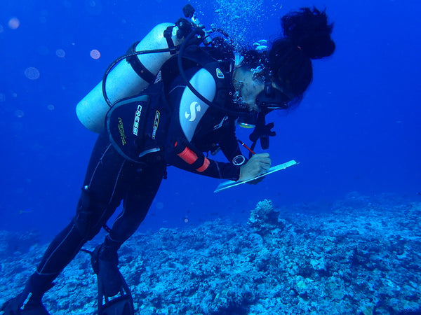 Scuba Diver working with Vatuvara