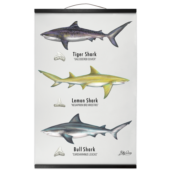 Bay Hanging Canvas Prints