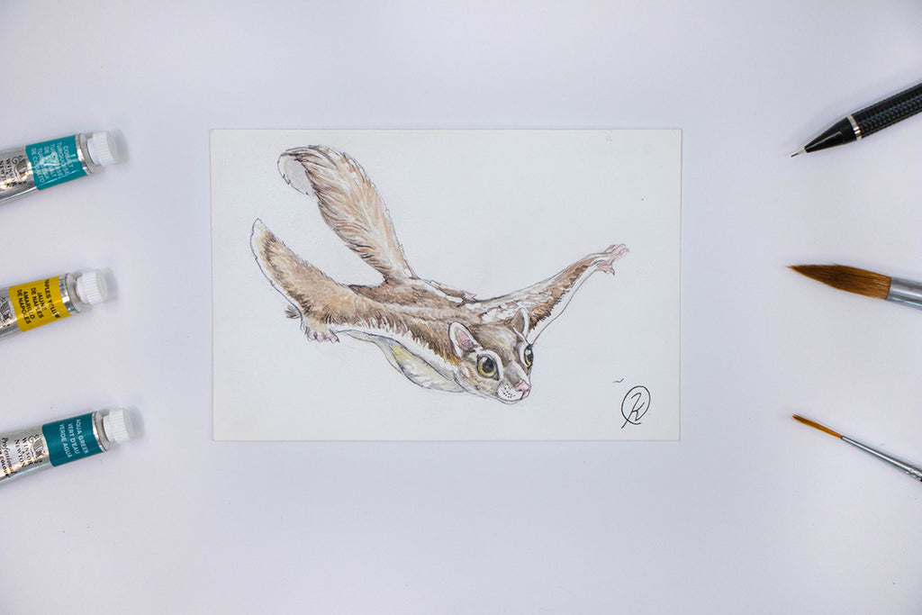 Flying Squirrel Watercolor Postcard