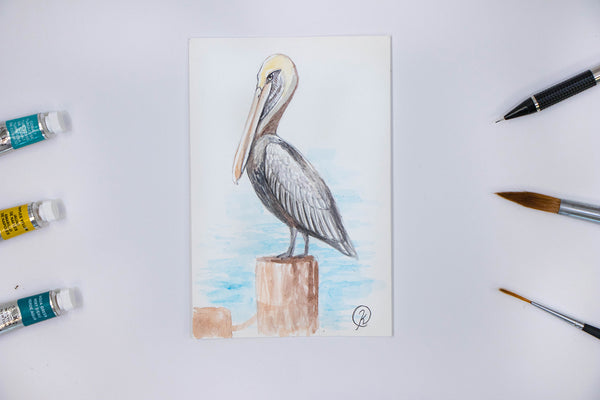 St Pete Pelican Watercolor Postcard