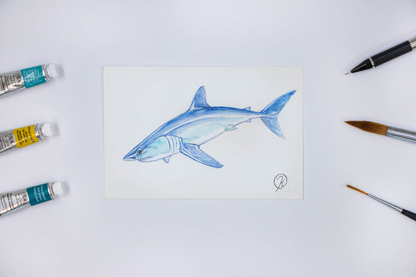 Shortfin Mako Watercolor Postcard