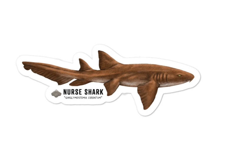 Nurse Shark Sticker