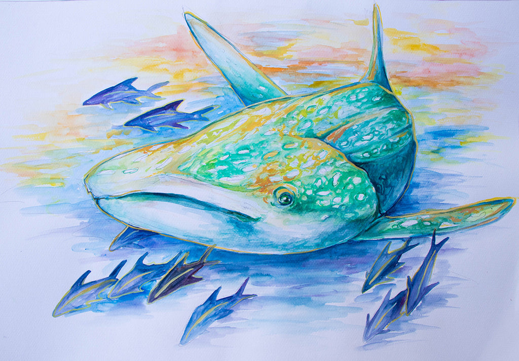 Whale Shark Watercolor
