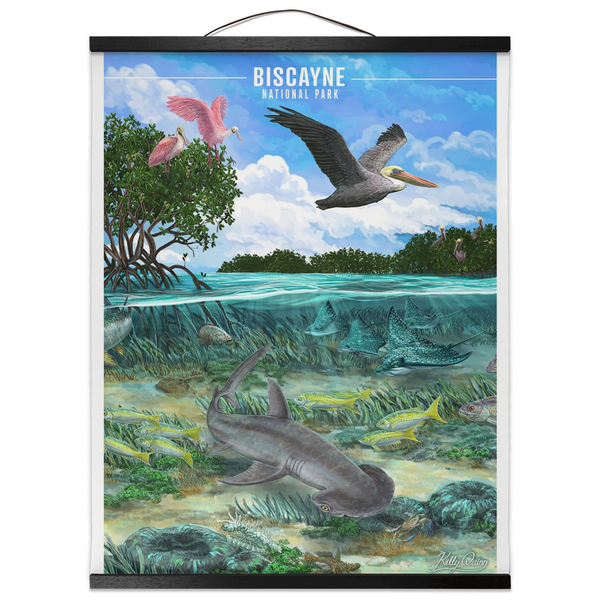 Biscayne Bonnethead Shark - Hanging Canvas Print