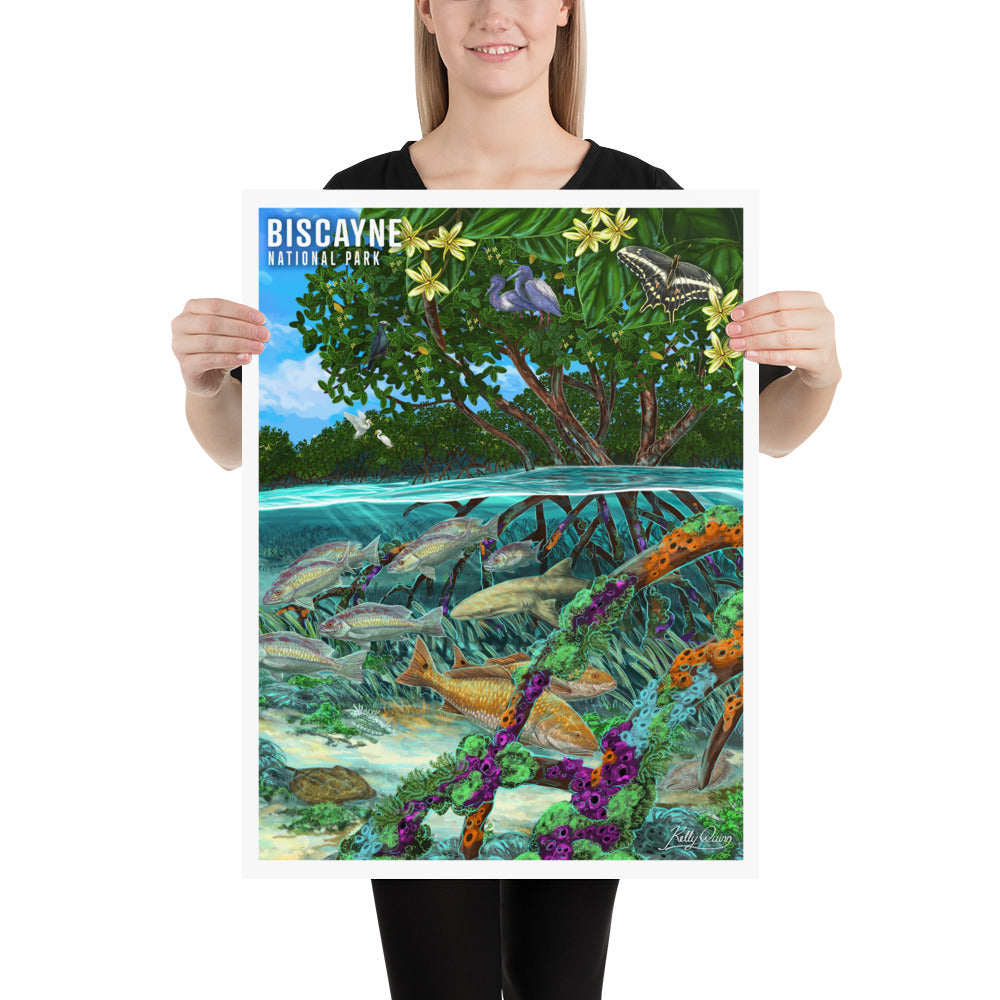 Biscayne Butterfly Poster