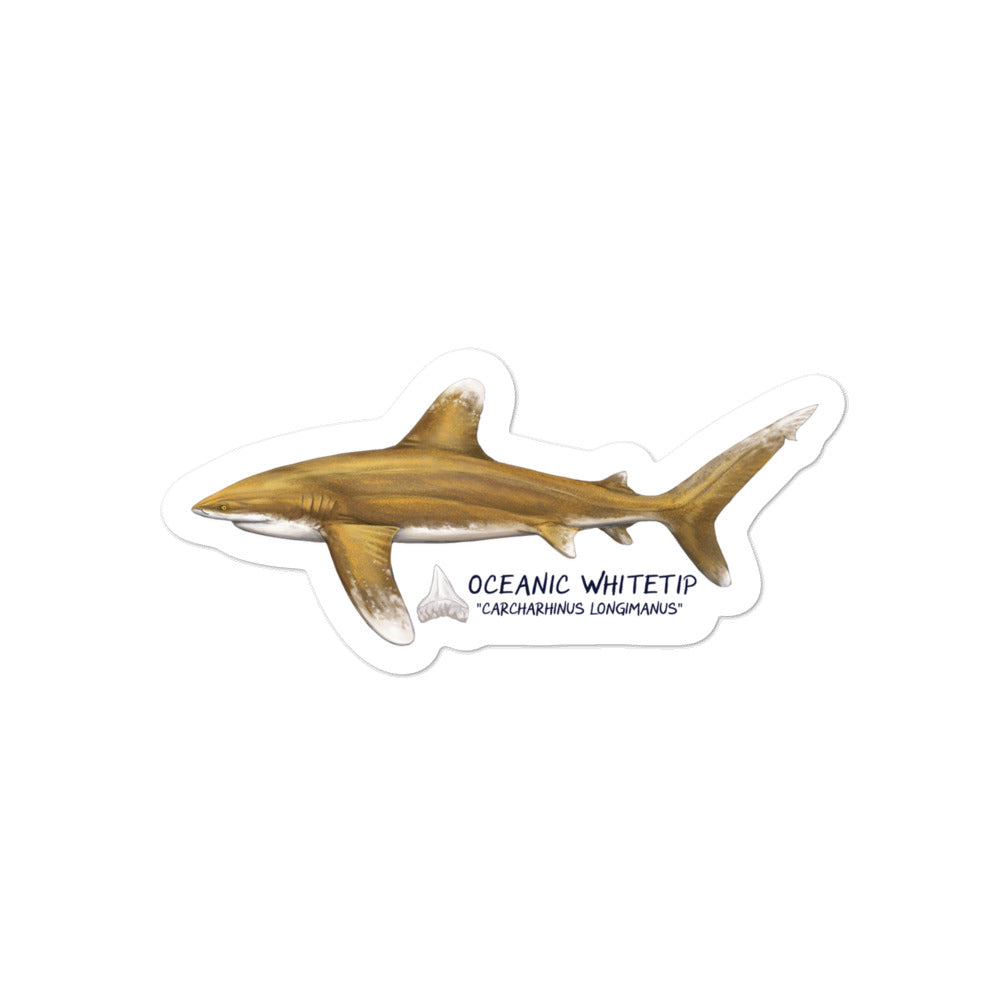 Oceanic Whitetip Sticker