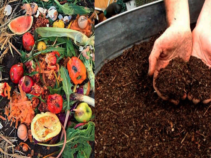 Why We Compost 100% of our Sacred Food Scraps