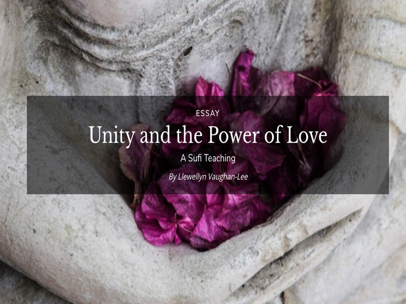 Unity and the Power of Love