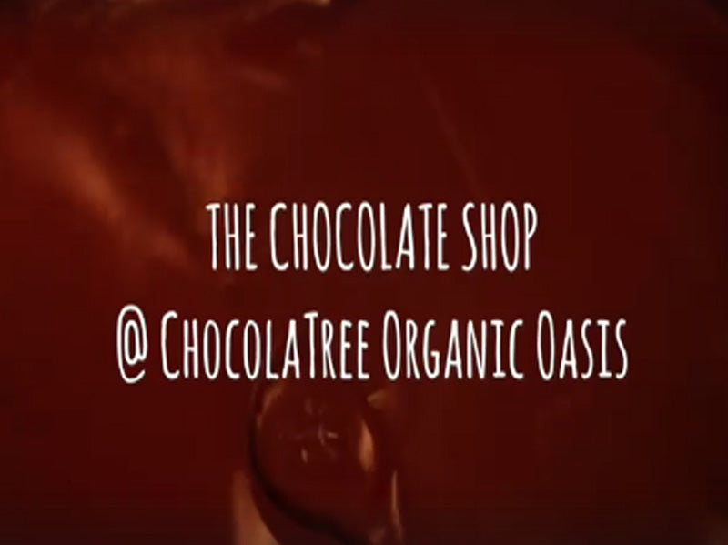 Joy of Chocolate Making with Chocolatier Jeffrey Botticelli