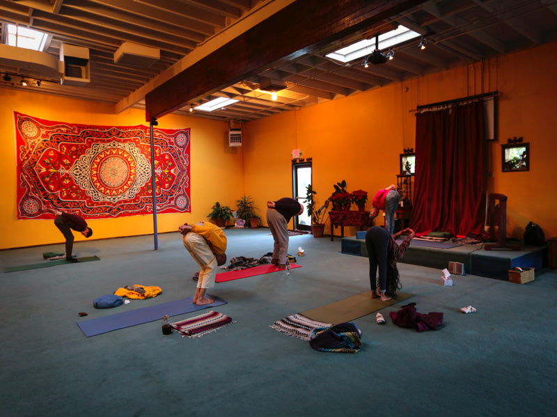 Sivananda Yoga & the Divine Grace Ashram