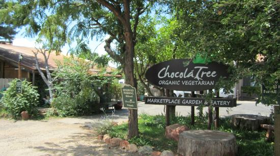 Location / Hours – ChocolaTree Organic Oasis
