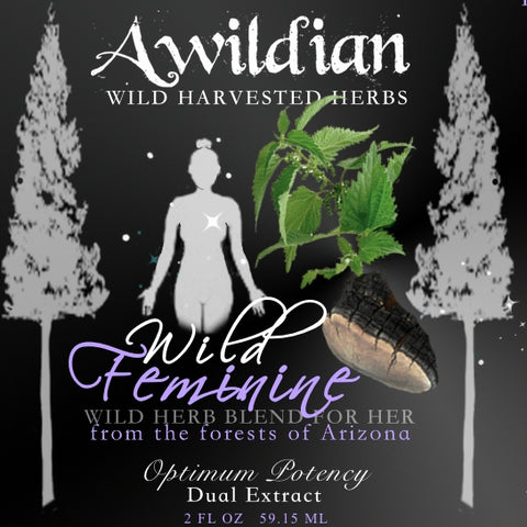 Awildian - Wild Whole Plant Nettle Tincture