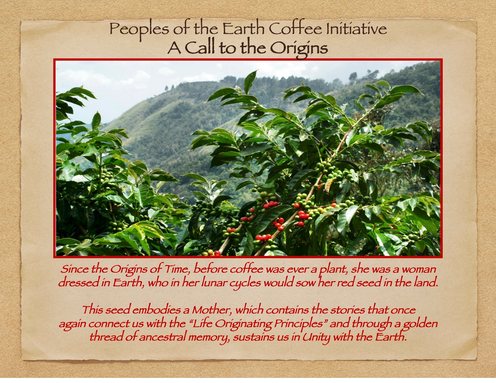 Mother Earth Restoration Trust Coffee