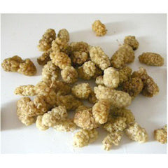 Chocolatree White Mulberries