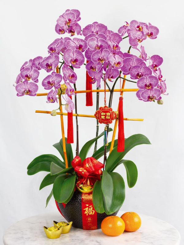Prosperity Blooms Chinese New Year Arrangement