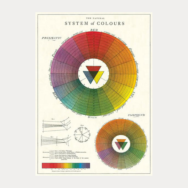 Cavallini & Co. Plakat No.37 System of Colours 50x70cm - Norway Designs