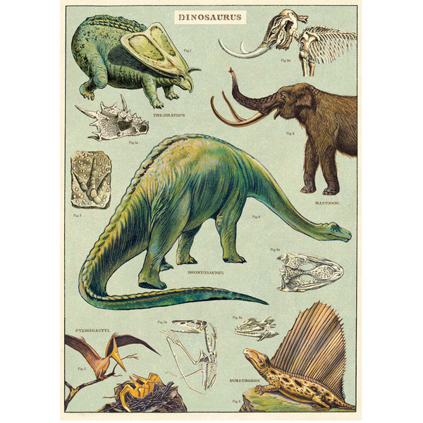 Cavallini & Co. - Plakat No.16 Dinosaurs - Norway Designs