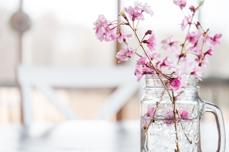 Spring Allergies and Gut Health
