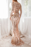 Serena Sequin Gown