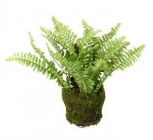 Faux Fern in soil
