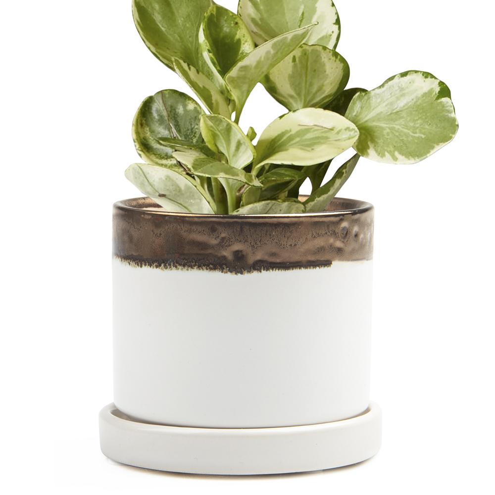 Big Minute Planter, Bronze & White