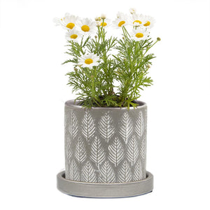 Big Balter Planter Grey Leaves
