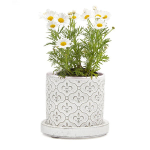 Big Balter Planter White Fleur