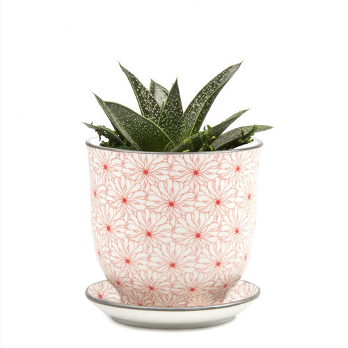 Liberte Planter Red Flowers