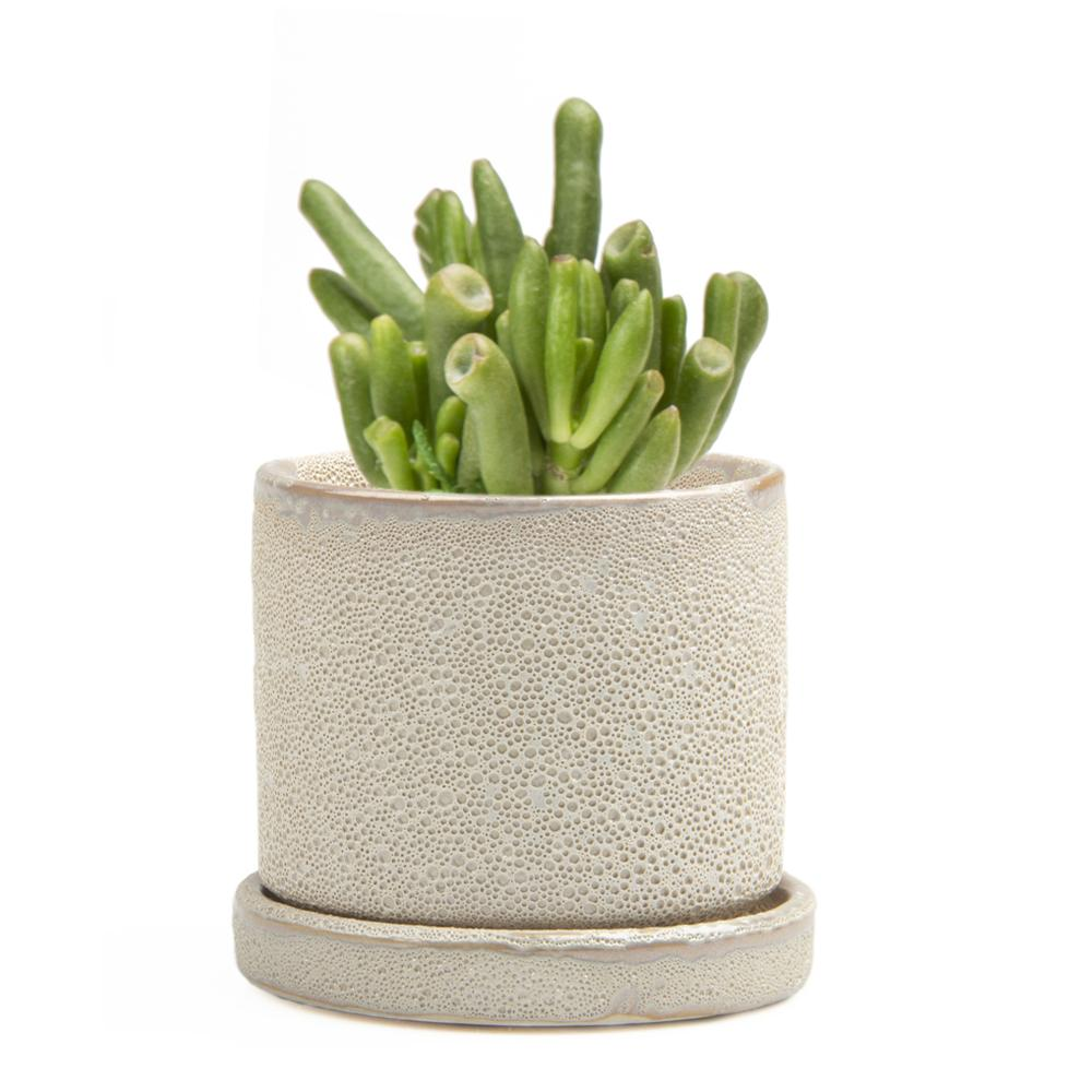 Small Minute Planter, Ivory Speckles