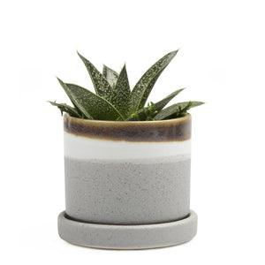 Small Minute Planter, Mocha