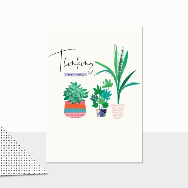 Thinking Of You (Plants)