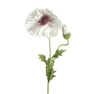 Cream Poppy Stem