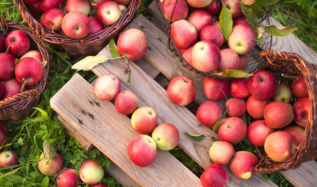 Selection of harvested apples