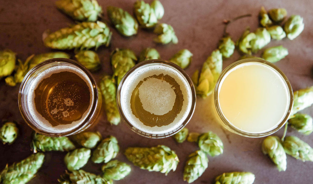 Pints of beer and hops on a table