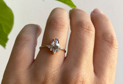 Rose Cut Salt + Pepper Diamond Engagement Ring with Attached Sunburst
