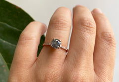 Round Cut Salt + Pepper Diamond Engagement Ring with Pavé Band
