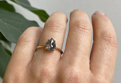 The Sage Ring with a Salt & Pepper Rose-Cut Diamond