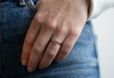 The Bryn Ring with a Salt & Pepper Round-Cut Diamond