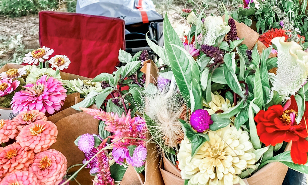 Close-up view of a flower farm vendor's display at the local Farmers Market.