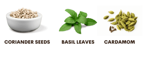 why to take basil leaves satvic foods