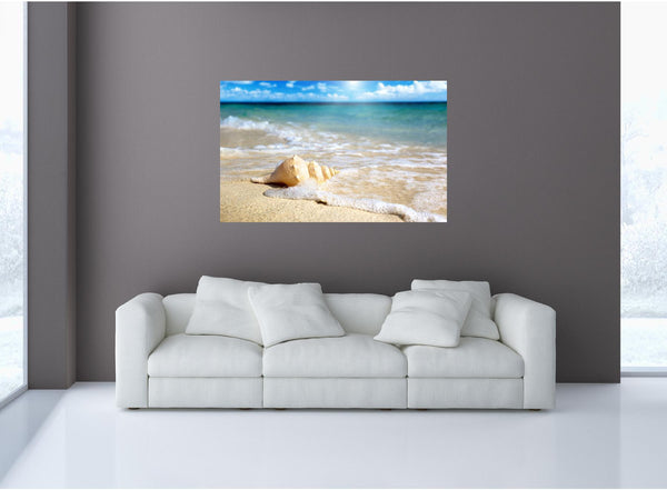 MiniMural: Beach Shell Wall Decal!