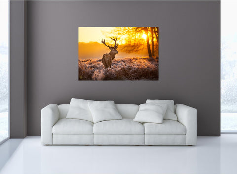 MiniMural: Deer Grazing In Morning Wall Decal!