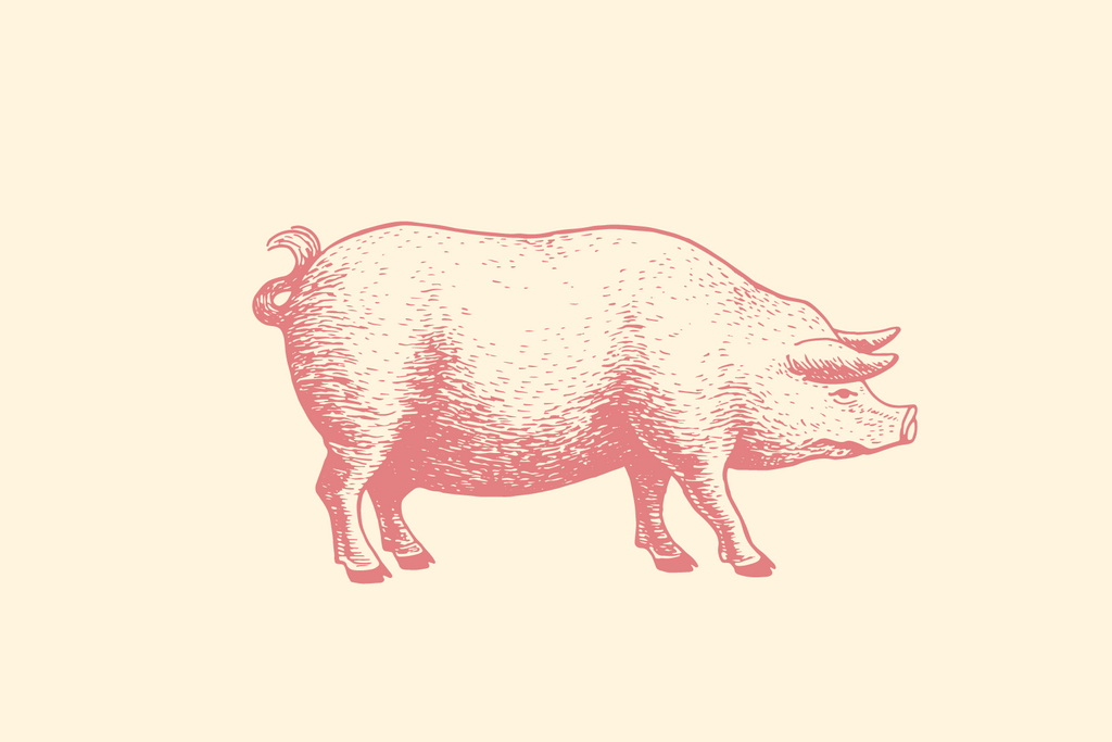 Link to pork cutting instructions