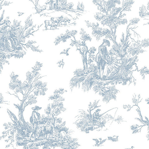 Light Blue Toile - AB27656