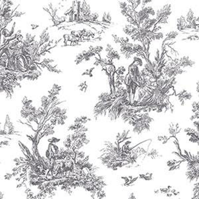 Toile, Black Patton AB42413