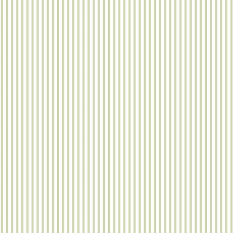Stripes in Green and White - CO25927