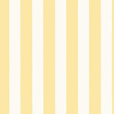 "1 1/4"" Regency Stripe, Butter Yellow Patton SY33906"